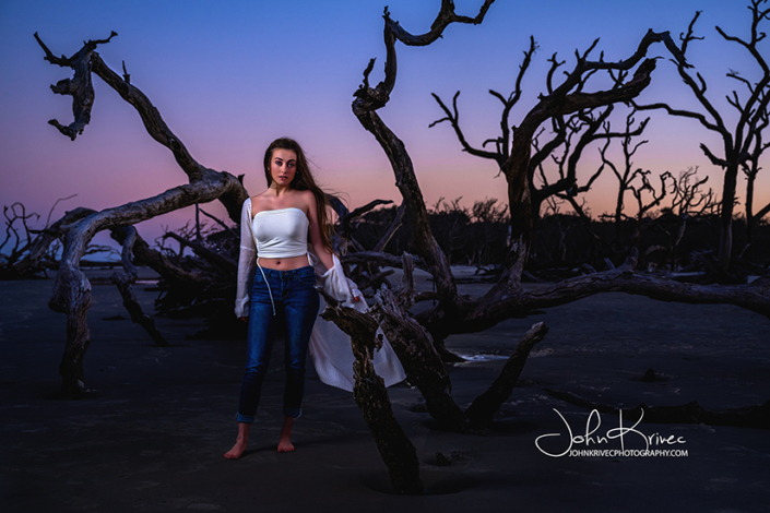 Photography Driftwood Beach Jekyll Island